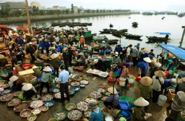 Explore Ha Long Wharf's seafood market